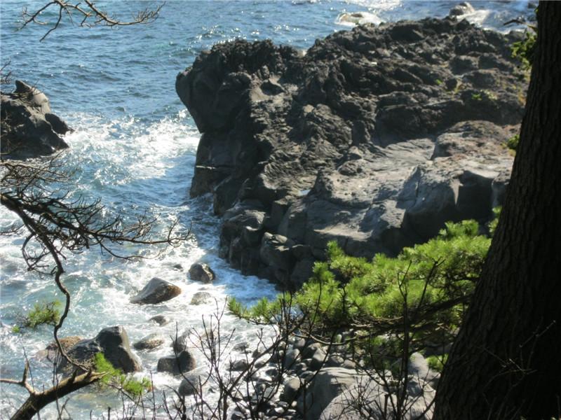 城崎海岸3
