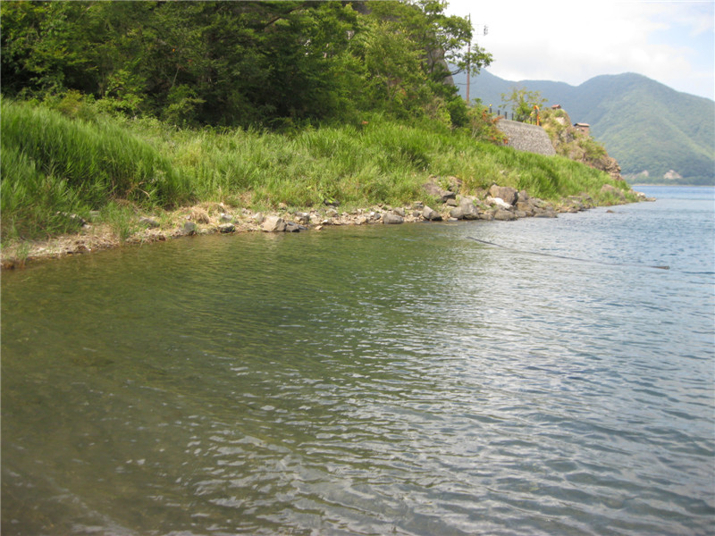 本栖湖15